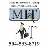 Mold Inspection & Testing New Orleans LA
